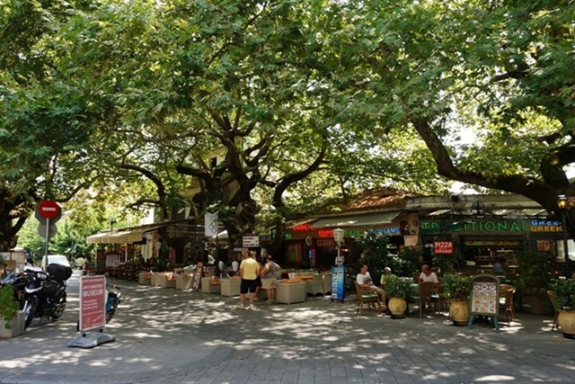 Olympia - Tavernas and cafes under the plane trees