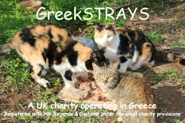 GreekSTRAYS - A UK charity operating in Greece