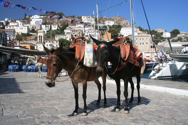 Donkeys are the main mode of transport on Hydra
