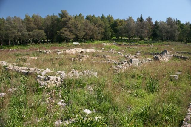 Argos: Aspis sanctuary - General view of the ancient site