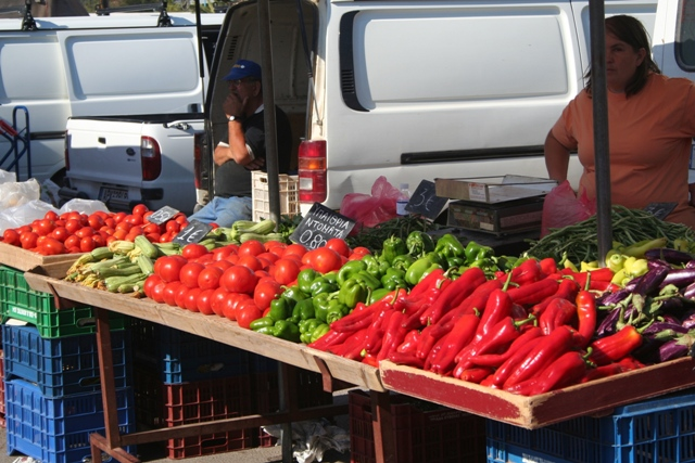 Fresh vegetables available at the market