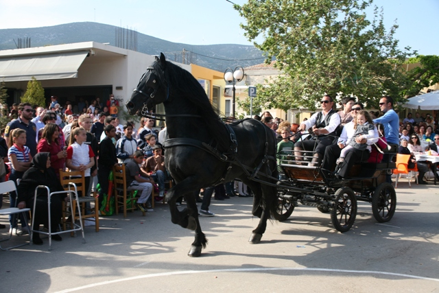 Didyma 'Tulips' festival - the horse parade begins