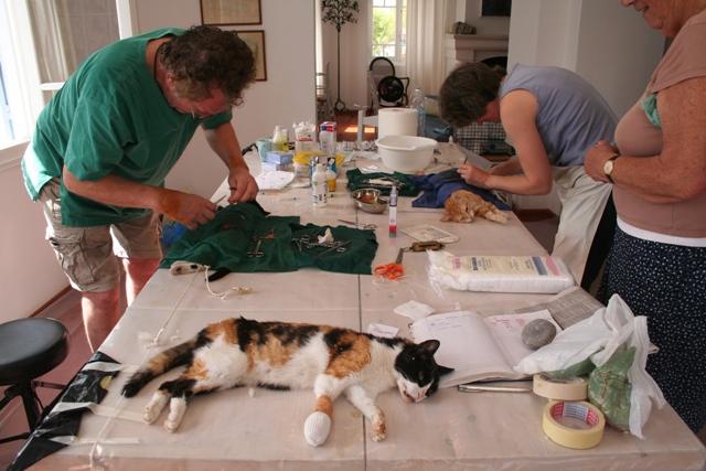 Donations go towards on-going animal neutering